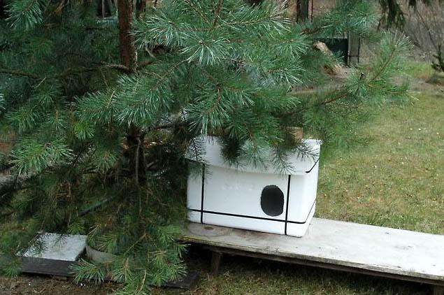 Jak vyrobit polystyrenové boudičky pro venkovní kočky?