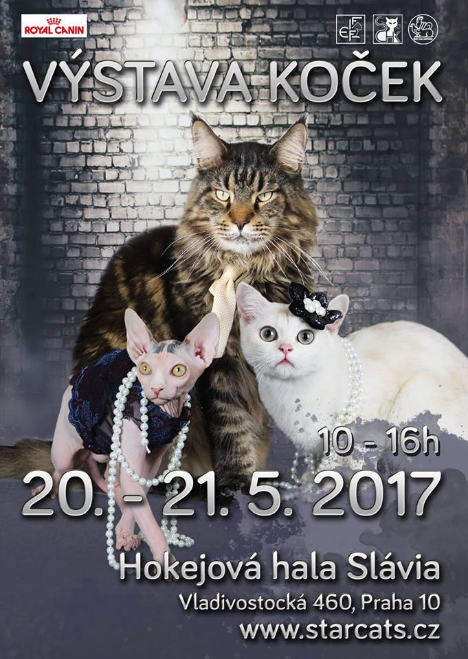 Pozvánka: Mezinárodní výstava koček Praha Slavia 20.-21. 5. 2017