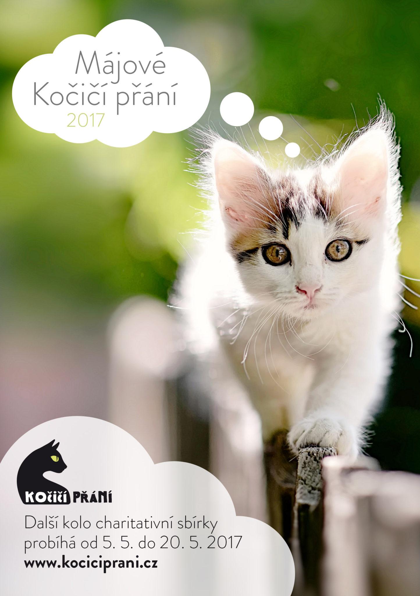 Dnes odstartovalo další kolo oblíbené charitativní sbírky Kočičí přání
