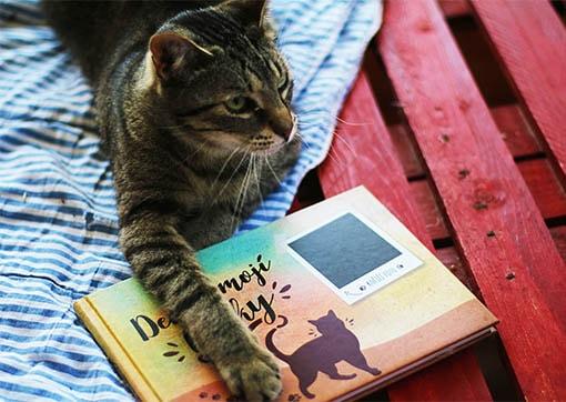 Tip pro všechny milovníky koček: Vytvořte svému mazlíčkovi stylový deník