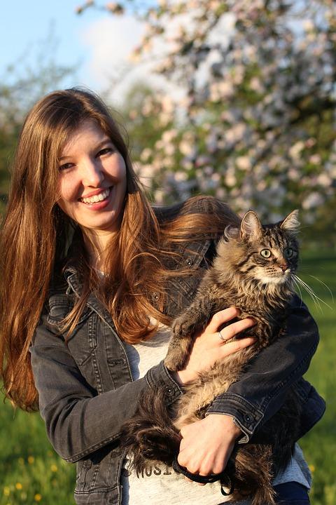 8 rad, jak si vybudovat důvěrný vztah s nedůvěřivou kočkou