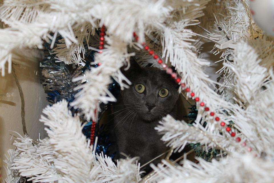 Pozor na vánoční řetězy a lamety