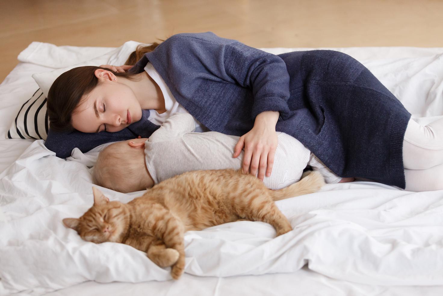 Jak připravit kočku na příchod miminka
