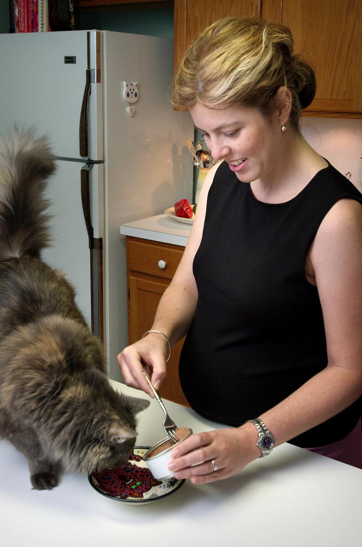 7 tipů, jak připravit kočku na příchod miminka