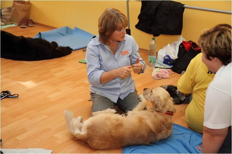 I psi mají své dny, kdy by se jim hodila masáž