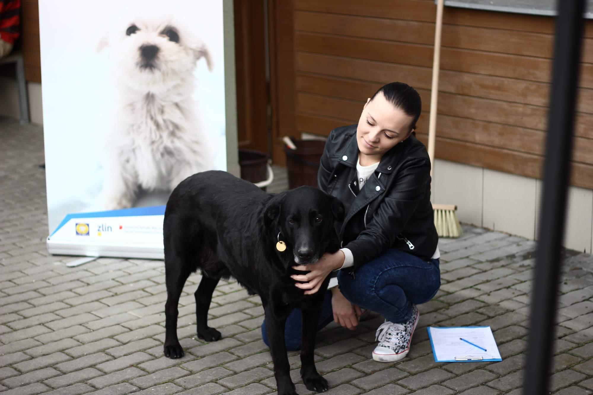 Přijďte s Němou tváří přivítat jaro do Útulku pro zvířata v nouzi Zlín-Vršava