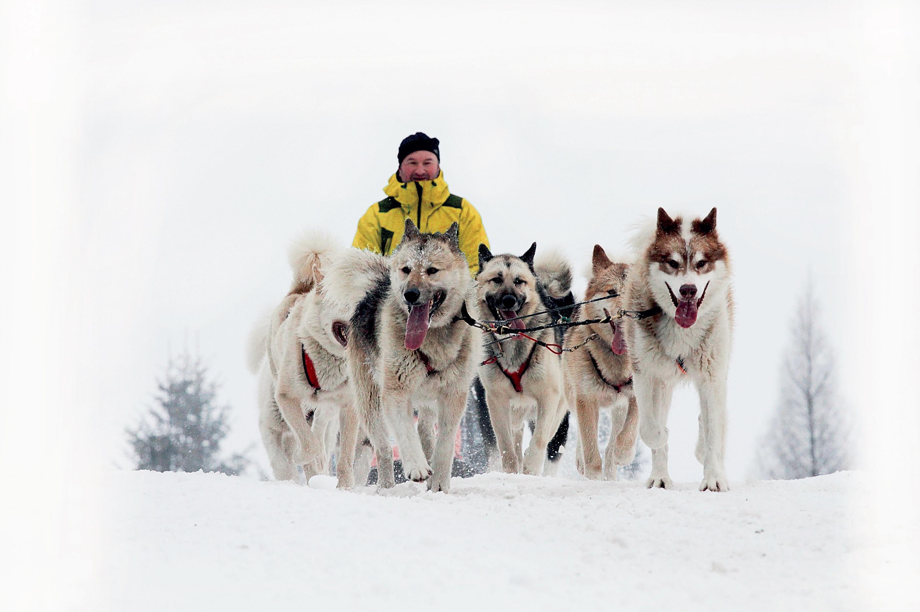 VDeštném vOrlických horách odstartoval 23. ročník Šediváčkova longu