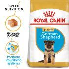 Royal Canin German Shepherd Puppy  - granule pro štěně německého ovčáka