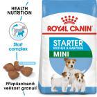 Royal Canin Mini Starter - granule pro březí nebo kojící feny a štěňata