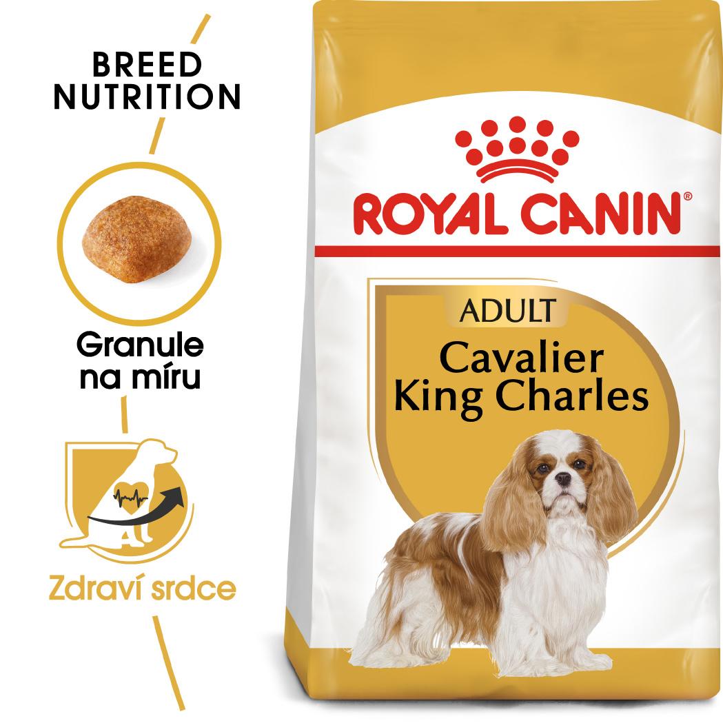 Royal Canin Cavalier King Charles Adult - granule pro dospělého kavalír king charles španěl