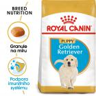 Royal Canin Golden Retriever Puppy - granule pro štěně zlatého retrívra