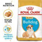 Royal Canin Bulldog Puppy - granule pro štěně buldoka