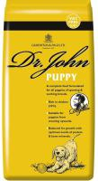 GILPA dog DR.JOHN   PUPPY