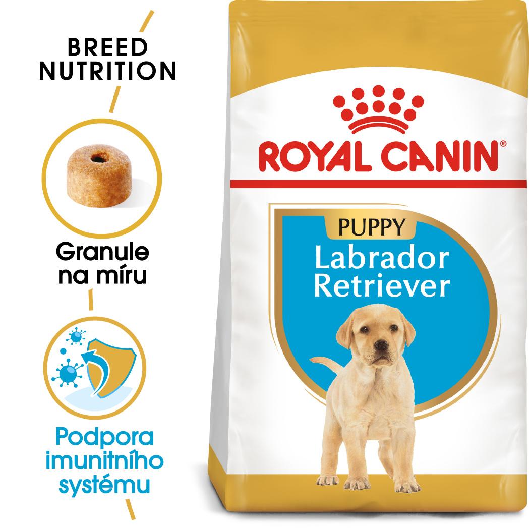 Fotografie Royal Canin Labrador Puppy - granule pro štěně labradora - 12kg Royal Canin