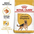 Royal Canin German Shepherd Adult - granule pro dospělého německého ovčáka