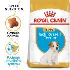 Royal Canin Jack Russell Puppy - granule pro štěně jack russell teriéra
