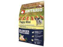 ONTARIO dog PUPPY MINI chicken