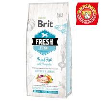 BRIT FRESH ADULT LARGE fish/pumpkin