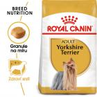 Royal Canin Yorkshire Adult - granule pro dospělého jorkšíra