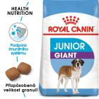 Royal Canin   GIANT  JUNIOR - granule pro obří štěňata