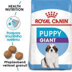 Royal Canin GIANT PUPPY - granule pro obří štěňata