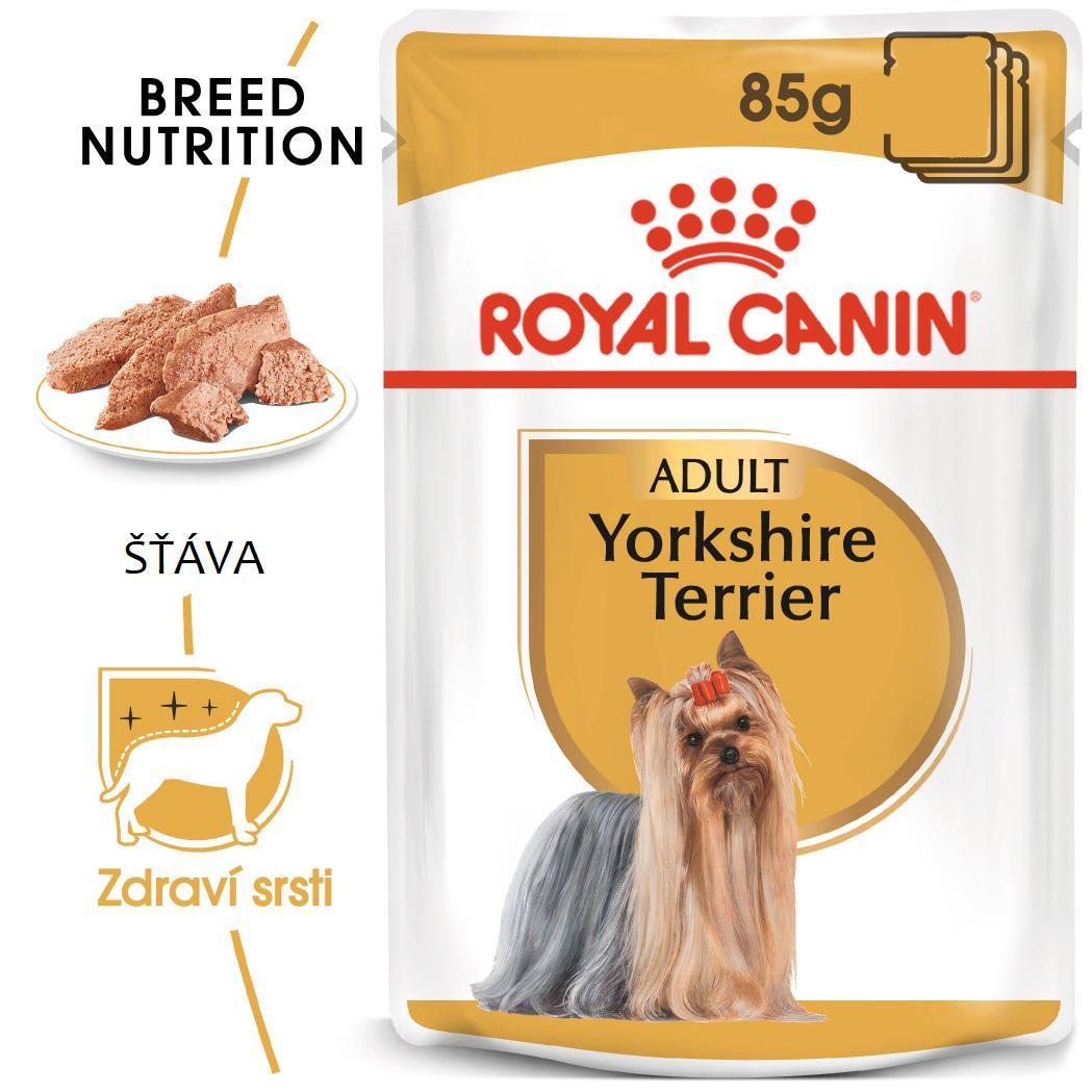 Royal Canin Yorkshire Loaf - kapsička s paštikou pro jorkšíra - 85g