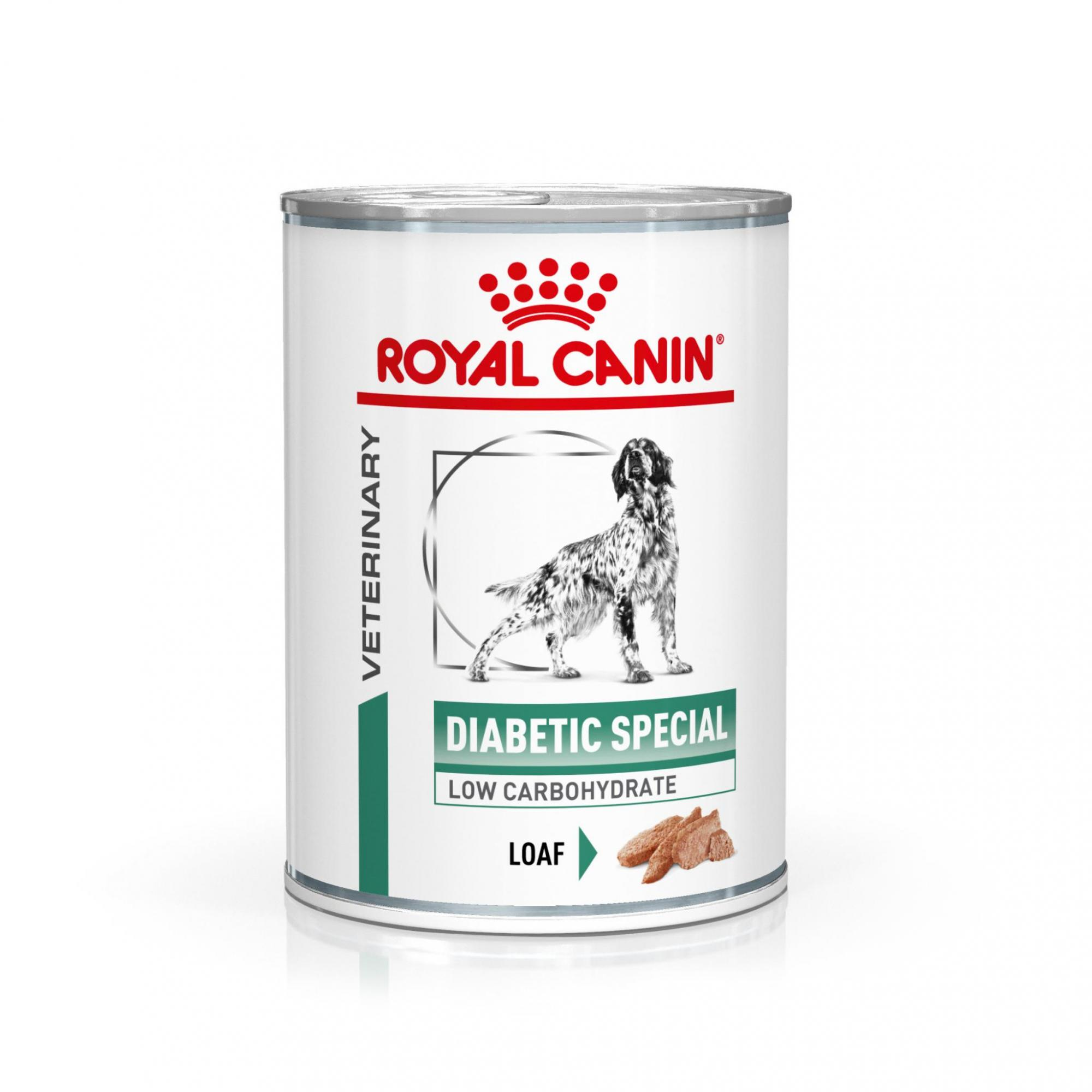 Royal Canin Veterinary Health Nutrition Dog DIABETIC konzerva - 410g