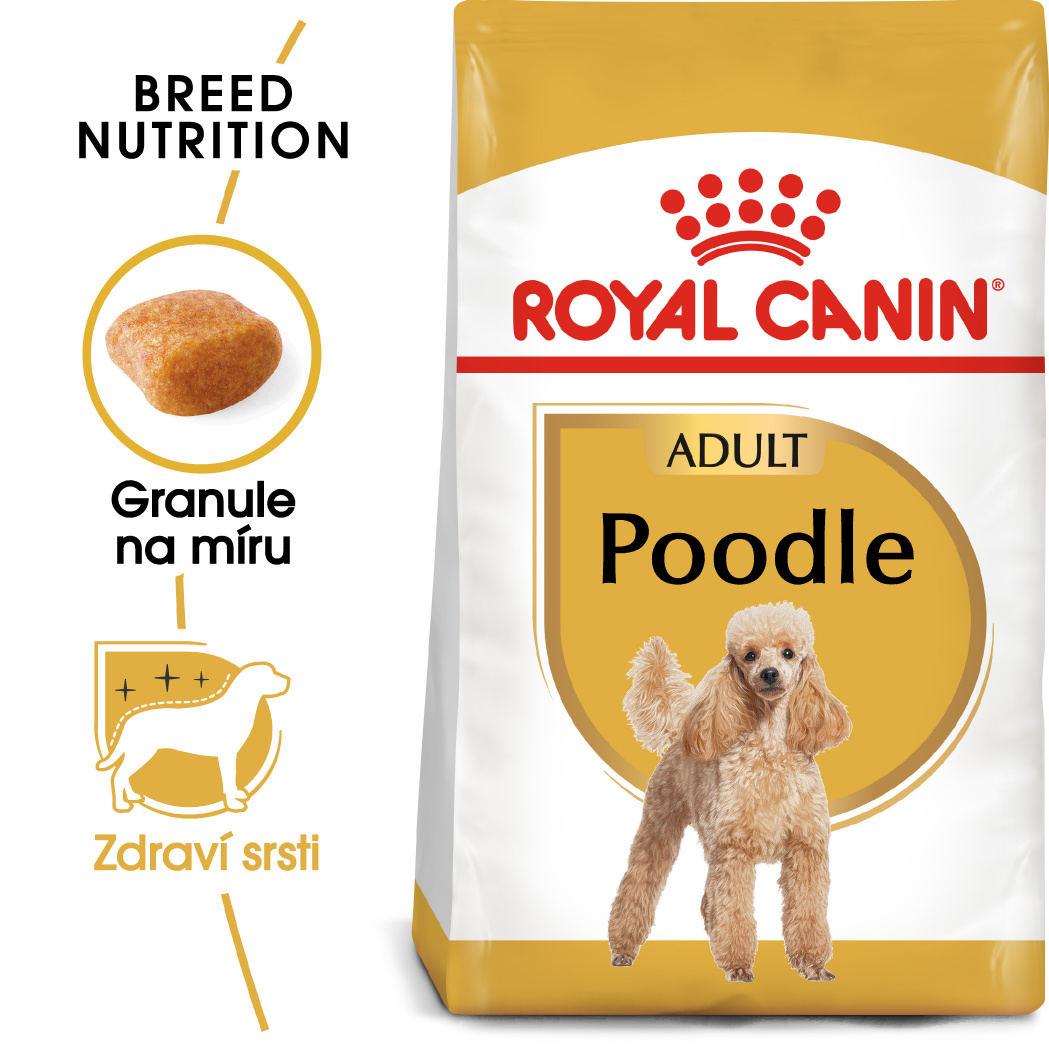 Royal Canin Poodle Adult - granule pro dospělého pudla - 500g