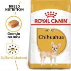 Royal Canin Chihuahua Adult - granule pro dospělou čivavu