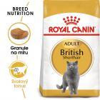 Royal Canin British Shorthair Adult - granule pro britské krátkosrsté kočky