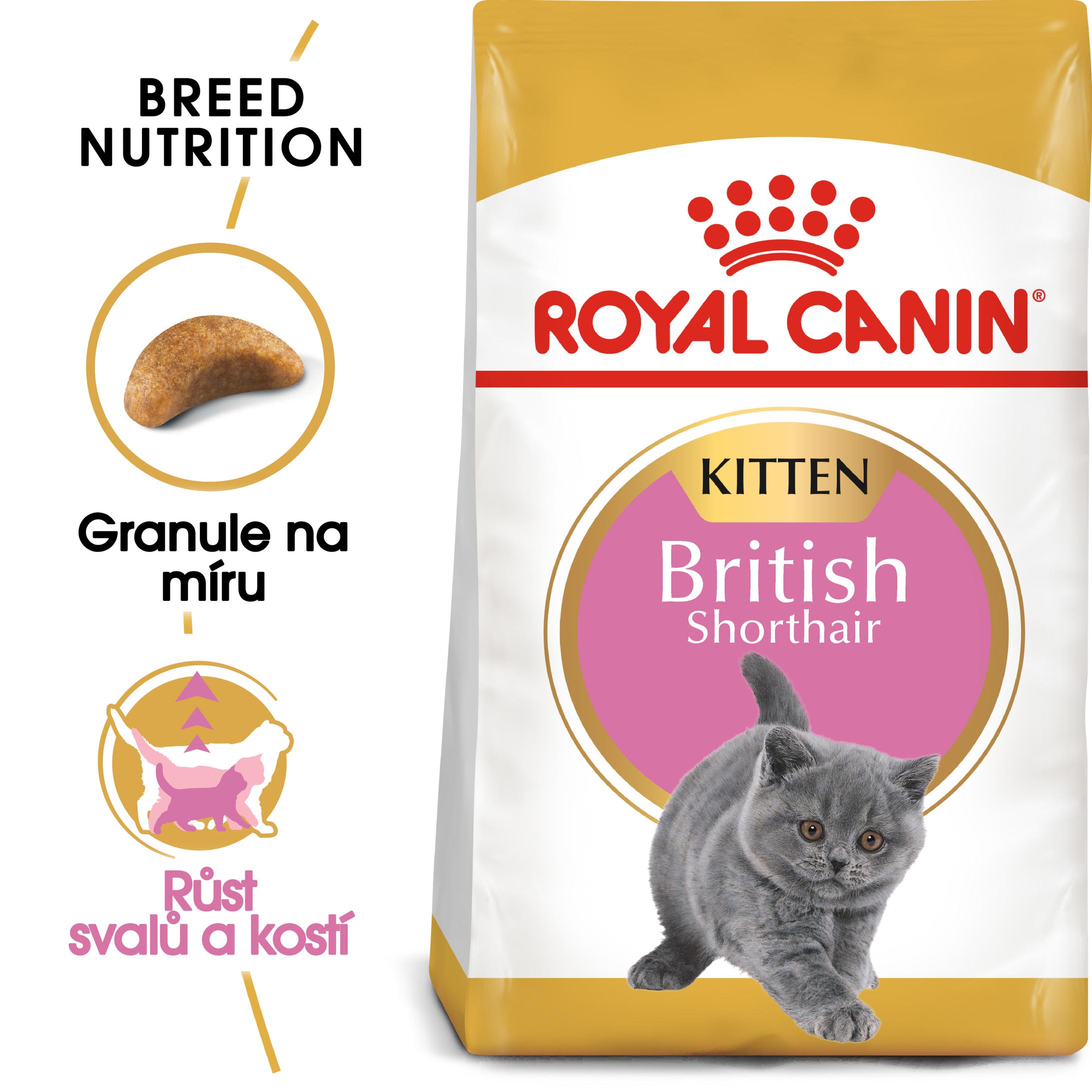 RC cat KITTEN BRITISH shorthair - granule pro britská krátkosrstá koťata - 2kg