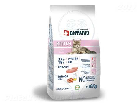 ONTARIO cat   KITTEN - 400g