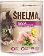SHELMA cat ADULT chicken