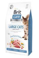 BRIT CARE cat GF  LARGE cats power/vitality