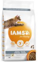 IAMS cat  INDOOR  chicken