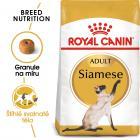Royal Canin Siamese Adult granule pro siamské kočky