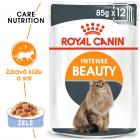 Royal Canin Intense Beauty Jelly - kapsička pro kočky v želé