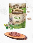 CARNILOVE cat  kapsa  ADULT  DUCK/catnip