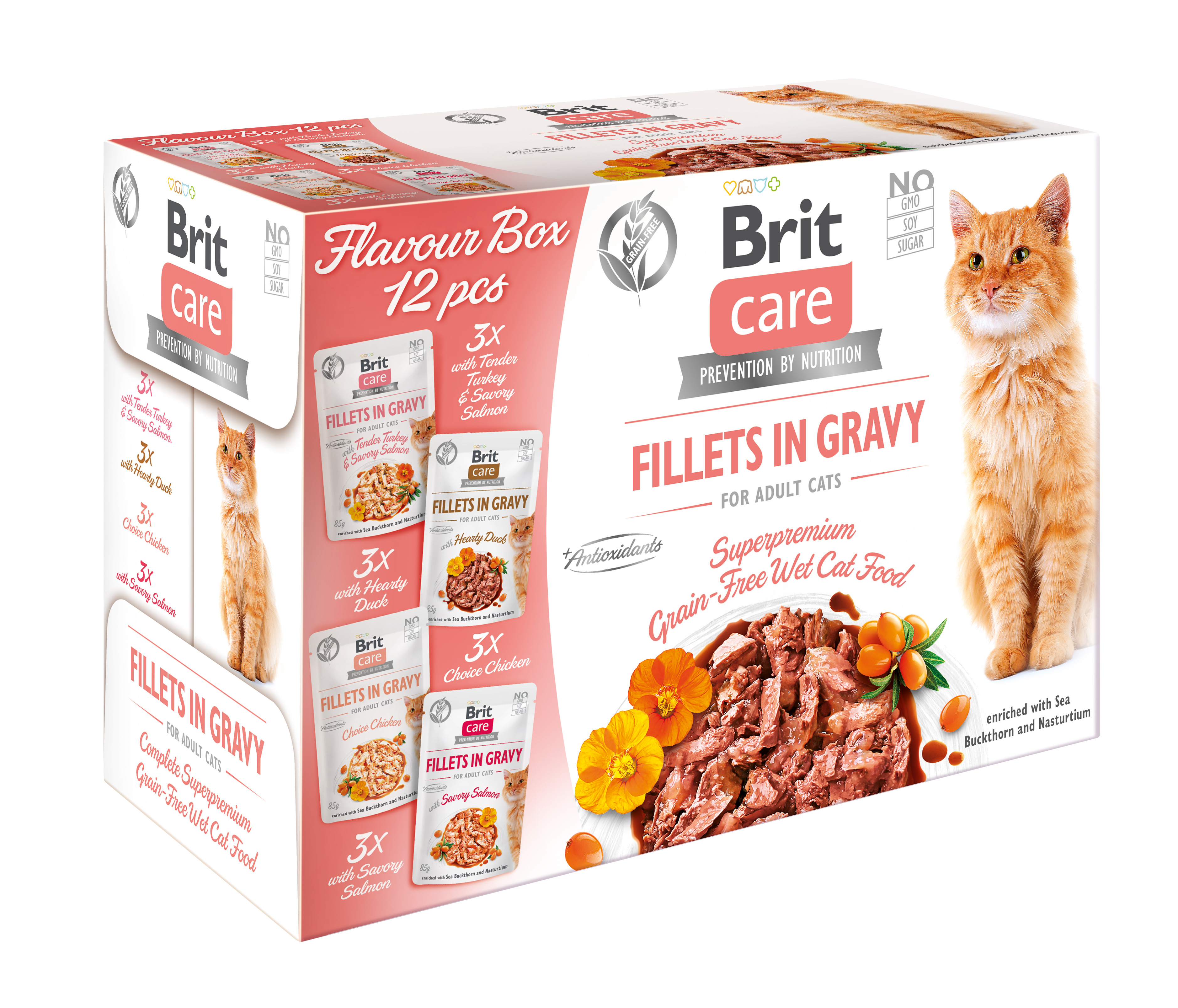 BRIT CARE cat kapsa FILLET in gravy - 12 x 85g