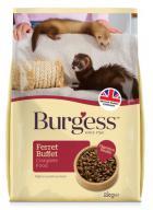 BURGESS FERRET