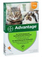 Antiparazitní spot-on  ADVANTAGE pro KOČKY a KRÁLÍKY 4ks