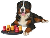 HRAČKA Dog Activity SOLITAIRE - deska s kužely