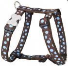 Postroj RD BLUE spots BROWN