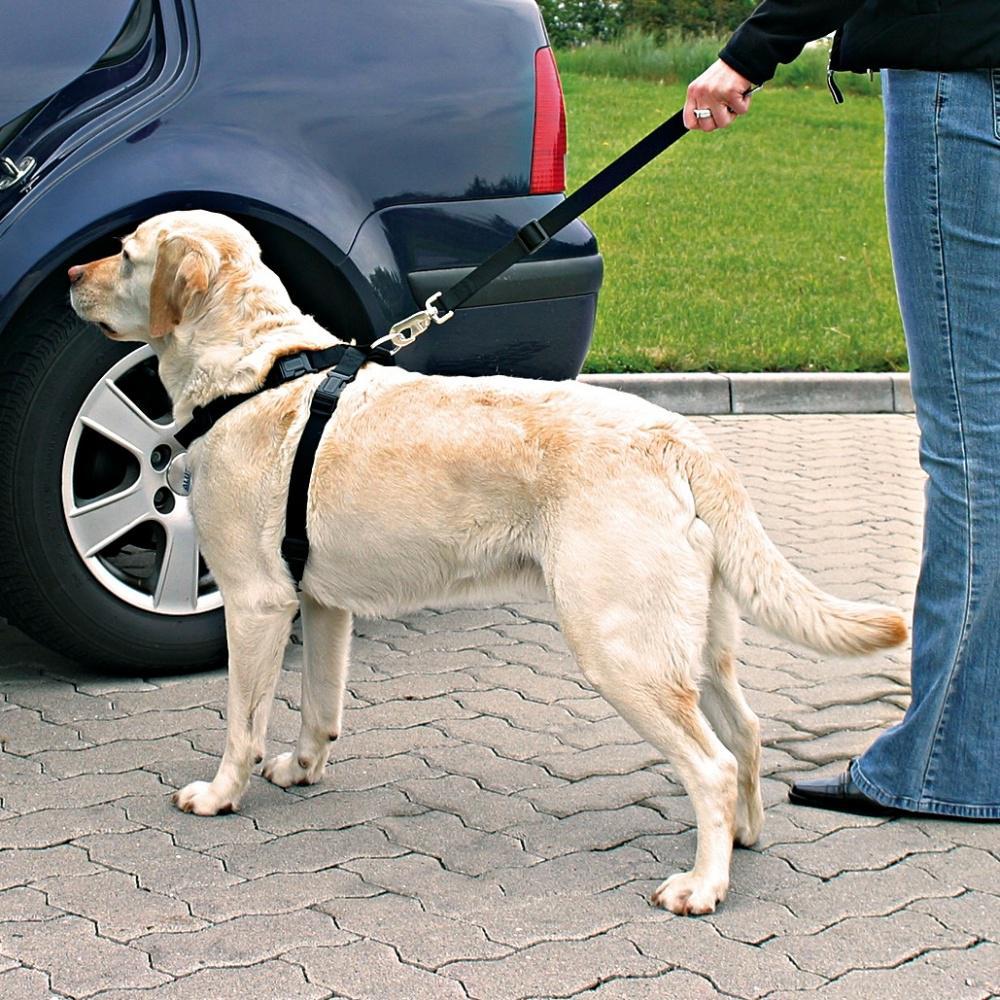 Trixie BEZPEČNOSTNÍ POSTROJ do auta - L