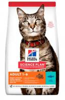 Hills cat  ADULT/tuna